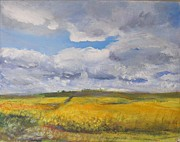 Helen Campbell - Canola and Couds