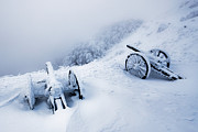 Guns Prints - Canons Print by Evgeni Dinev