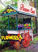 Tamborine Photos - Canungra Flower Cart by Therese Alcorn