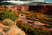 Canyon De Chelly Posters - Canyon De Chelly Poster by Harry Spitz