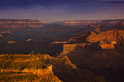 South Rim Framed Prints - Canyon Shadows Framed Print by Andrew Soundarajan