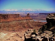 Canyonlands 3 Print by Marty Koch