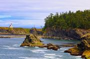 Coos Framed Prints - Cape Arago Lighthouse At Shore Acres Framed Print by Craig Tuttle