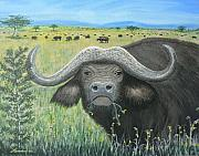 Cape Buffalo Paintings - Cape Buffalo by Don Lindemann