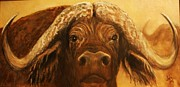 Cape Buffalo Paintings - Cape Buffalo by Jody Domingue