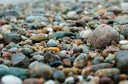 Cape Cod Metal Prints - Cape Cod Beach Rocks Metal Print by Kelly Wade