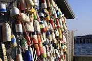 Buoys Prints - Cape Cod Buoys Print by Dapixara Art