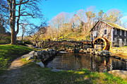 Catherine Reusch Daley Fine Artist Photos - Cape Cod Grist Mill by Catherine Reusch  Daley