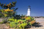 Cape Cod Scenery Prints - Cape Cod Highland Light Print by Dapixara Art
