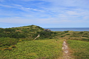 Cape Cod Metal Prints - Cape Cod National Seashore Bearberry Hill View Truro Metal Print by John Burk