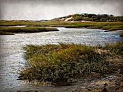 Chatham Prints - Cape Cod National Seashore Print by Joan  Minchak