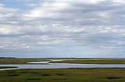 Cape Cod Photography Posters - Cape Cod Salt Marsh Poster by Juergen Roth