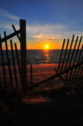 Beach Fence Metal Prints - Cape Cod Sunset Metal Print by Catherine Reusch  Daley