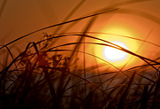 Cape Cod Metal Prints - Cape Cod Sunset Metal Print by Jim  Calarese