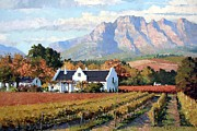 Autumn Vineyards Paintings - Cape Dutch Wine Farm by Roelof Rossouw