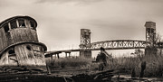 Earth Tones Metal Prints - Cape Fear Memorial Bridge Metal Print by JC Findley