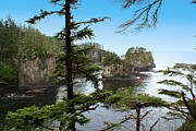 Most Digital Art Posters - Cape Flattery Poster by Christy Hodgin