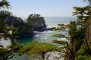 Cape Flattery Inlet Washington Print by Stacey Lynn Payne