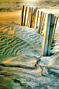 Fences Prints - Cape Hatteras Dunes  Print by Steven Ainsworth