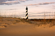 Dare County Framed Prints - Cape Hatteras Lighthouse Framed Print by Tony Cooper