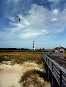 White Lighthouse Prints - Cape Lookout Lighthouse Nc Print by Skip Willits
