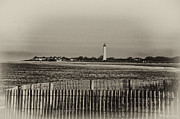 Lighthouse Digital Art - Cape May Light House in Sepia by Bill Cannon