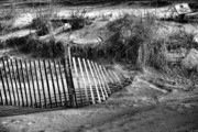 Chuck Kuhn - Cape May shore