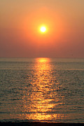 Gloaming Prints - Cape May Sunset Print by Susan Stevenson