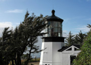 Tillamook Lighthouse Posters - Cape Meares Lighthouse near Tillamook on the scenic Oregon Coast Poster by Christine Till