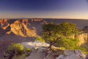 Grand Canyon Digital Art - Cape Royal Sunset - Grand Canyon by Ellen Lacey