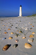 Apalachicola Prints - Cape Saint George Lighthouse 2 - FS000777 Print by Daniel Dempster