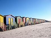 Beach Hut Posters - Cape Town Beachhuts Poster by Linda Russell