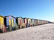 Cape Town Beachhuts Print by Linda Russell