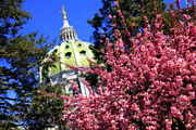 Pennsylvania Art - Capitol in Bloom by Shelley Neff