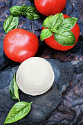 Mozzarella Prints - Caprese Print by Stephanie Frey