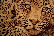 Wood Burn Pyrography Prints - Captivated Print by Steven Hawkes