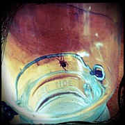 Scary Art - Captive #spider #masonjar #scary by Jenni Pixl