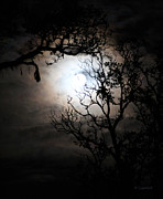 Moonlit Night Prints - Capturing The Full Moon Print by Kerri Ligatich