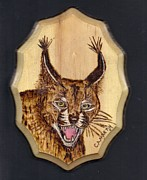 Mammal Pyrography Prints - Caracal Print by Clarence Butch Martin