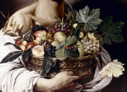 Caravaggio Photo Posters - Caravaggio: Fruit, Poster by Granger