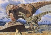 Dinosaurs Photo Posters - Carcharodontosaurus Guards Its Kill Poster by Mark Hallett