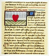 The Language Posters - Cardiac Treatise, 15th Century Poster by