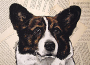 Corgi Dog Portrait Posters - Cardigan Welsh Corgi Headshot Poster by Christas Designs