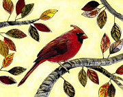 Cardinal Mixed Media - Cardinal by Amy Giacomelli