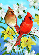 Song Birds Framed Prints - Cardinal Day Framed Print by JQ Licensing