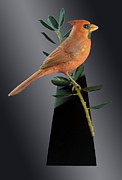 Framed Bird Prints Painting Prints - Cardinal on Holly Branch Print by David Tabor