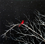 Sabrina Zbasnik - Cardinal on Snowy Night