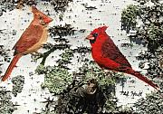 Cardinal Mixed Media Framed Prints - Cardinal Pair II Framed Print by Philip Hall