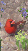 Wings Of A Bird Paintings - Cardinal Springtime by Debra     Vatalaro