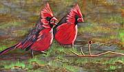 Feeding Birds Pastels Prints - Cardinal Two Print by Tracey Hunnewell